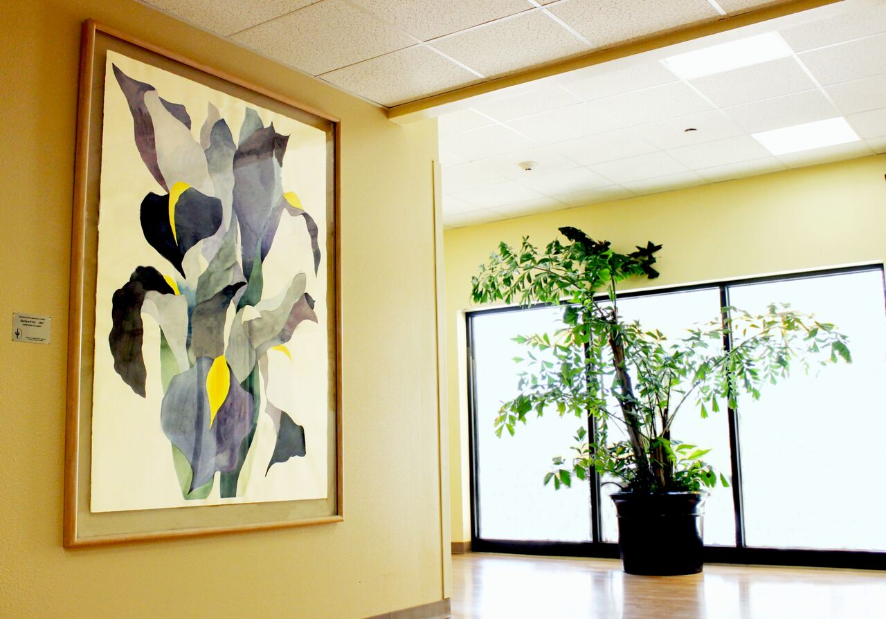 A large Barbara Smith watercolor near the emergency rooms
